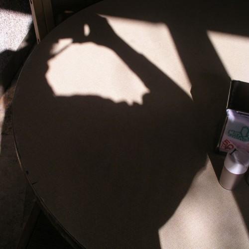 נני סתיו: בין השמשות